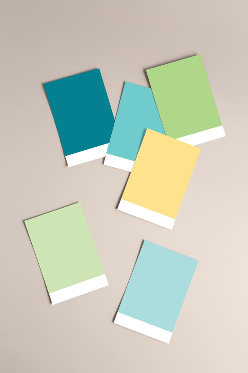 Lumina Design House Project : Connect Support Coordination - Brand Colour Palette